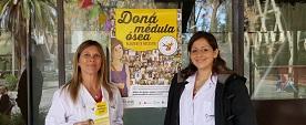 Argentina alcanzó los 1000 trasplantes de médula ósea con donante no emparentado